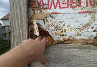 Common Reasons for Wood Rot