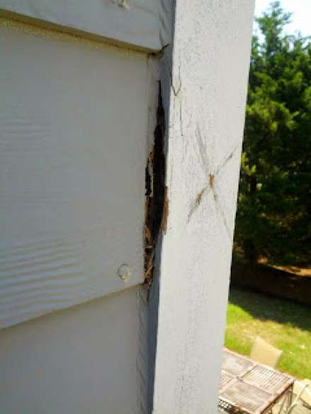 Wood Rot - What Every Homeowner Should Know